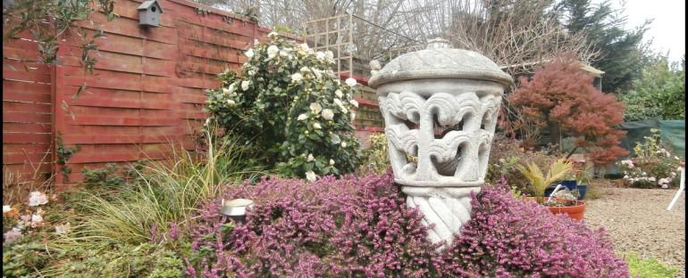 Mars 2020..mon jardin