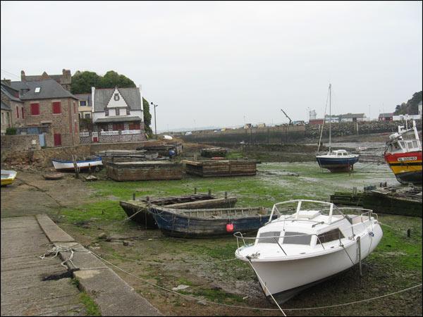 vielles carcasses de bateaux