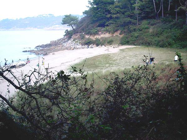 plage-carree