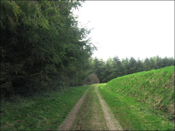 verte vallée