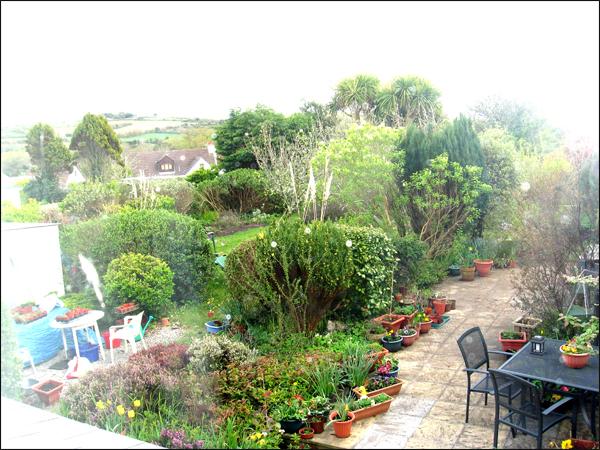 le jardin de Cheryl