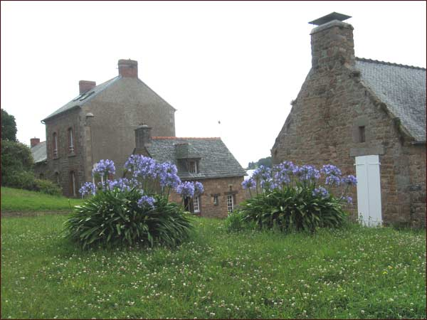 maisons types de l'île