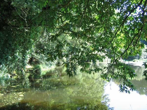 rivière de la vallée du Leguer