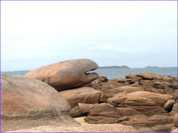 rocher en forme de baleine