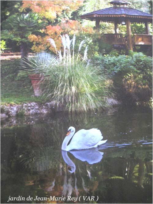 jardin de Jean_Marie Rey