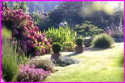 autre jardin sympas