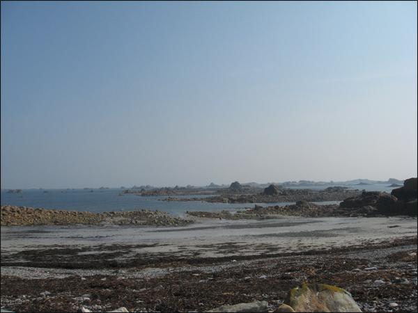 plougrescant ( marée basse)