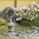 jardin-japonais-jardin-japonais-03
