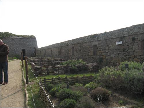 jardin-medieval-