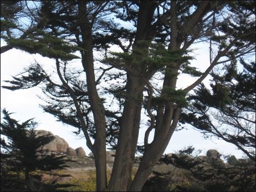 vue-des-rochers-