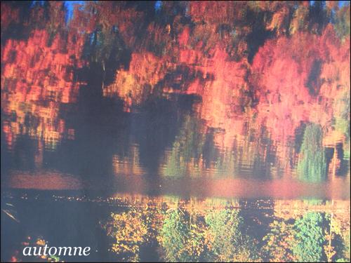 Les pens es - L automne et ses couleurs ...