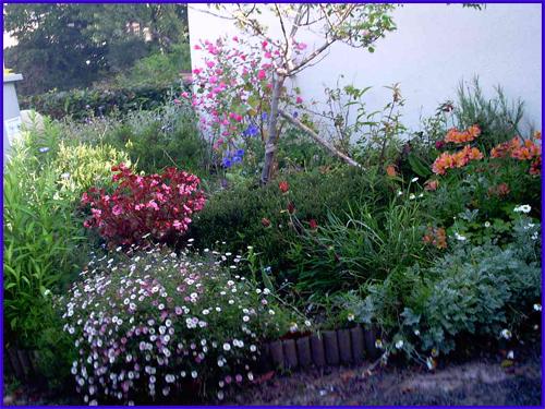 Petit jardin en bretagne for Blythe le jardin de maman