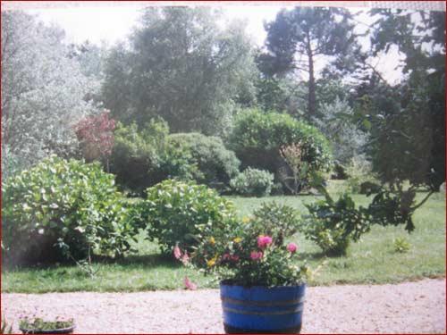 autre-vue-du-jardin