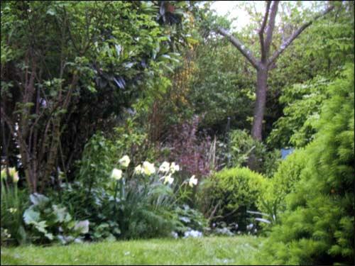 le-fond-du-jardin