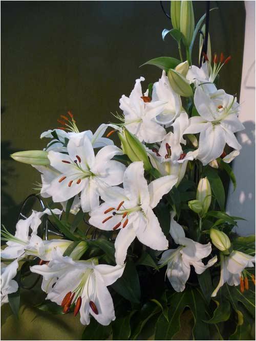 bouquet-no-3-_les-lys