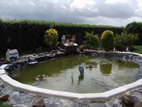 bassin en forme de coquille