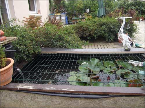 mon-petit-bassin