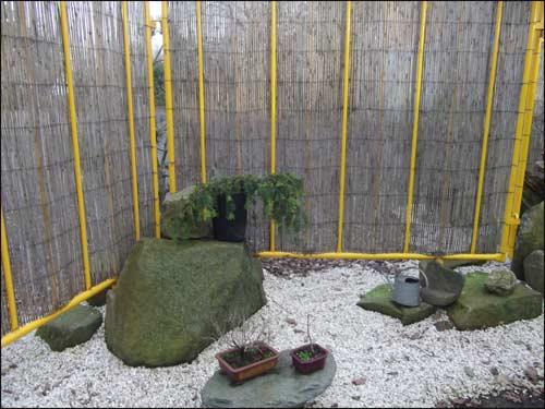 exposition-bonsai