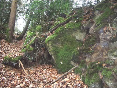 pierres-moussues