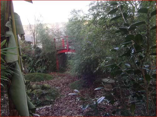 Reparlons jardin et bonsai calimerette - Quand mettre du fumier dans son jardin ...