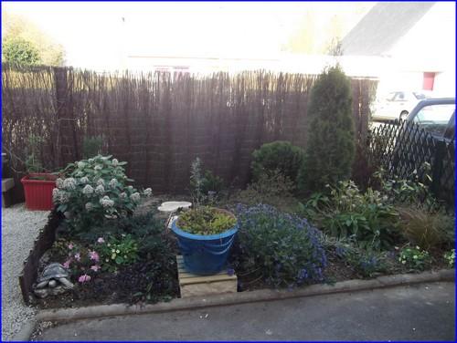 jardin-cote-cour-maintenant