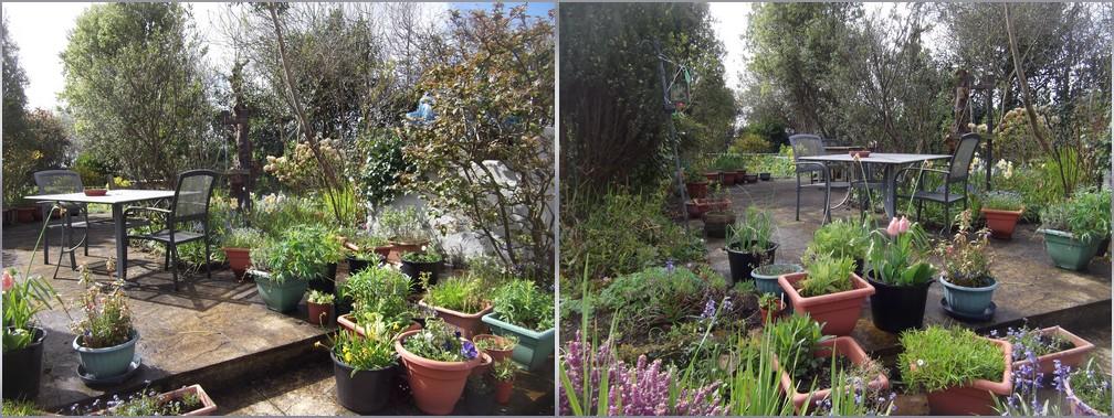 Le jardin de Cheryl et Don