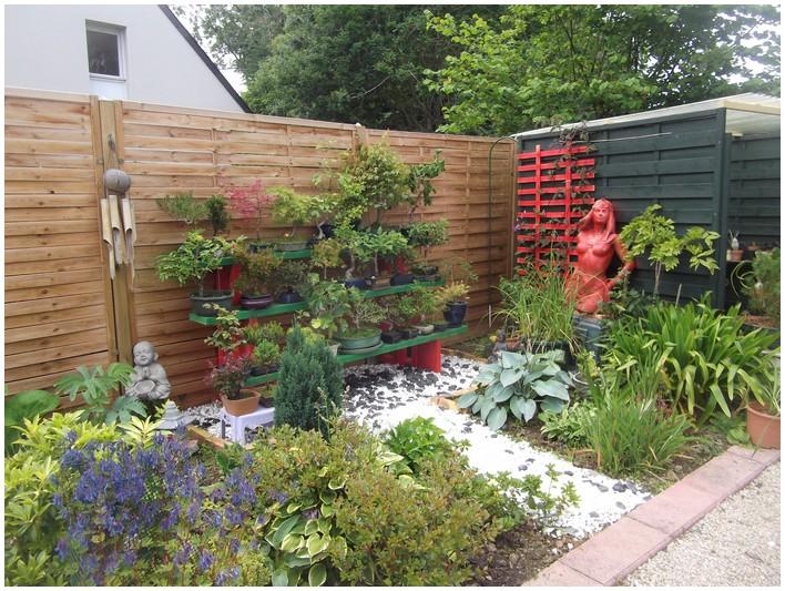 Les plantes de mon jardin en aout for Le jardin des fleurs