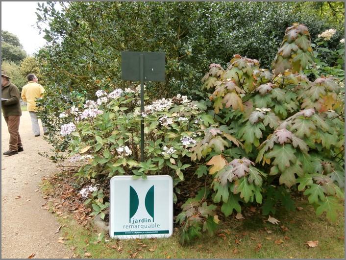 Le jardin du pellinec en bretagne for Jardin remarquable