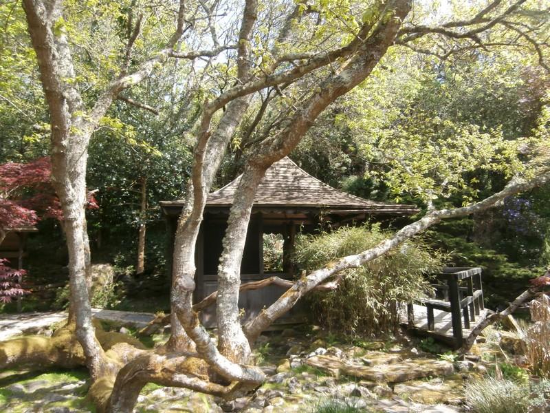 Un Jardin Japonais En Angleterre Cornouailles