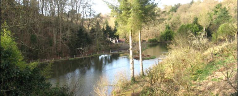 Photos Bretagne : Vallée de Kerdu